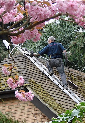 Our staff cleaning the moss from a roof in Pevensey near Eastbourne